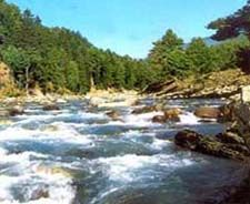 Package tour to  Kashmir Srinagar,Gulmarg, Pahalgam,Nagin Lake, Sonmarg, Shikara, Dal Lake,Honeymoon Tour packages,Recognised by Govt of India