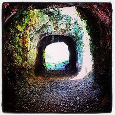 Porque siempre hay luz al final del túnel.... Buenos días y feliz martes!!! #cabarceno #lacasucadecabarceno #casa #cantabria #rural #ruralgallery #túnel #luz #buenosdias #naturaleza #natural #igerscantabria #alojamiento #destinorural #parquenatural #santander #vacaciones #paz
