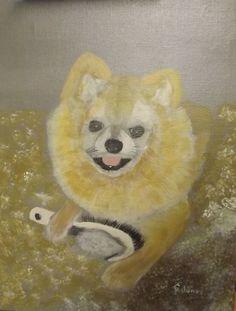"""Groom Me"" 11 x 14 acrylics on canvas panel of our Pomeranian, Zipper"
