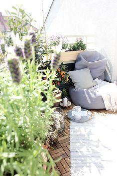 Die besten 25 lavendel wohnzimmer ideen auf pinterest - Lavendel zimmerpflanze ...