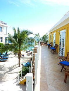Oceanview - Palmtrees - Scuba Lodge