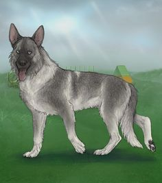 Silver Sable GSDs at Alacrity Sim