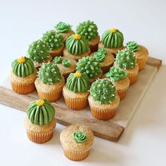 Baker Alana Jones-Mann Dishes On Dessert Inspo and DIY Designs - Cupcakes Cupcakes Succulents, Cactus Cupcakes, Cactus Cake, Cactus Food, Taco Cupcakes, Cupcake Party, Cupcake Cakes, Easy Dessert Bars, Fun Party Themes