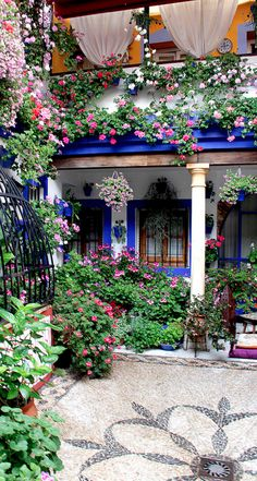 Courtyard of flowers in Cordoba, Spain ...