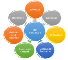 Management information systems are distinct from other information systems because they are used to analyze and facilitate strategic and operational activities Management Information Systems, Accounting, Beekeeping