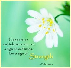 Compassion and tolerance are not a sign of weakness, but a sign of strength. Dalai Lama #compassion #tolerance #sign #signs #weakness #strength #dalailama #quote #quotes #buddha #buddhism #flowers #nature #lifequote #life #dailymemes #compassionateliving #memes #daily #quoteoftheday #quotesaboutlife #zen #strengthquotes #confidence #inspiration #inspirationalquotes #motivation