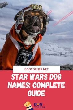 Yes, this is a guide. The first thing you need to know is that naming your pet can be a complicated thing and there are a lot of things to consider. Star Wars dog names are not the first choice but these are the only choice for many dog owners. We all like Star Wars and we all like our dogs. Naming our friend as a character from the movie is fun and can be extremely appealing. Funny Dog Memes, Funny Dogs, Dog House Kit, Dog Corner, Dog Shaming, War Dogs, Guide Dog, Girl And Dog, Dog Houses