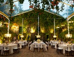hanging chandeliers, trees, ivy