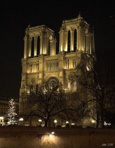 Notre Dame de Paris at night...one of the prettiest and coolest places I have ever been to.