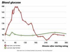Blood Sugar Levels on Low Carb High Fat : Edify