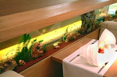 Raumteiler Süßwasser - Aquarium Bar, München #Aquarium #Meerwasser #Aquarium West www.aquariumwest.de #Aquarium München