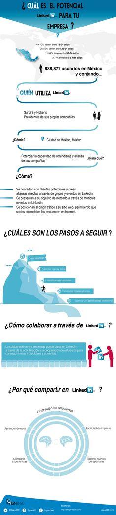 El potencial de Linkedin para tu empresa vía: @Signestudio Mexico #infografia #infographic #socialmedia
