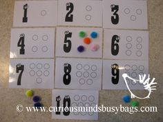 Number Fill-In Fill in the blank circles with the correct number of poms.  You get 10 laminated cards printed on card stock and 10 poms. $5.00