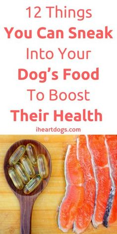 Help your dog be the healthiest they can be!