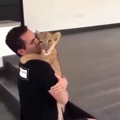 Cute Lion Baby Loves To Play With Dude - Tiere - Adorable Animals Cute Funny Animals, Cute Baby Animals, Funny Cute, Animals And Pets, Cute Cats, Kids Animals, Funny Dogs, Cute Lion, Cute Animal Videos