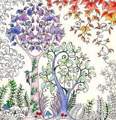 The new colouring book takes readers on a inky quest of 60 illustrations through an enchanted forest to discover what lies in the castle