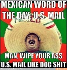 Omg mexican word of the day are hilarious!!