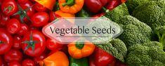 Buy Online Vegetable Seeds in India Flower Seeds Hybrid Herb Seeds India Herb Seeds, Garden Seeds, Seeds Online, Seed Packets, Flower Seeds, Tropical Flowers, Herbs, Canning, Vegetables