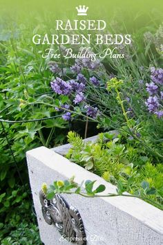 These raised garden bed plans offer several ways to build affordable elevated garden beds. This is an excellent solution for problems with poor soil, bad drainage, sloped yards, and bad backs! Elevated Garden Beds, Raised Garden Bed Plans, Building Raised Garden Beds, Raised Beds, Farm Gardens, Outdoor Gardens, Veggie Gardens, Landscaping Blocks, Cinder Block Garden