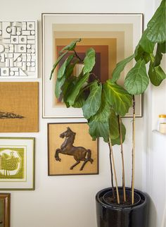 Tips on putting together a gallery style wall