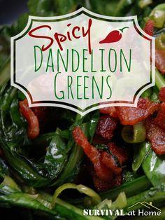 Spicy Dandelion Greens Recipe   #prepbloggers #foraging #recipe