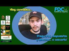 Vlog cannabico| Vuestros vídeos y preguntas - Domingo de Directo