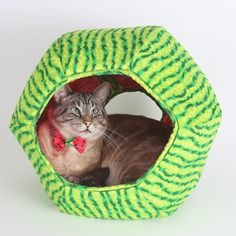 Our watermelon Cat Ball® cat bed is a cute and fun place for your cat to play, lounge and sleep. We particularly enjoy seeing black cats inside this bed, as they look like a big watermelon seed. These