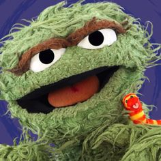 Oscar the grouch and slimey I still think they are two of the best characters along with snufflupagus (sp)