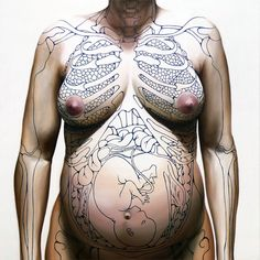 changes to a woman's body in pregnancy. great illustration!