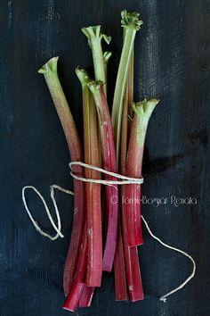 Rhubarb | renata torok-bognar