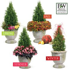 One container, 4 ways! Here's how to change out that one container by your front door or garage for each of the seasons. http://emfl.us/oCLd