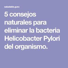 5 consejos naturales para eliminar la bacteria Helicobacter Pylori del organismo.