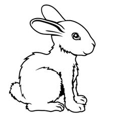 konijnen-0005