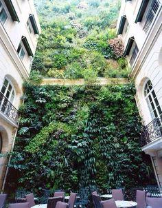 Vertical Wall Wow