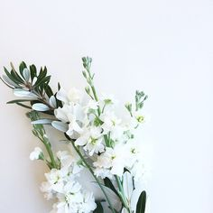 #prom #camillelavie #inspiration