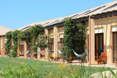 Casa Vale da Lama Eco Agroturismo, Algarve, Portugal. REOPENS 9th JUNE. Book your stay with breakfast included and feel the experience of living in a rural farm organicholidays.com/at/3524.htm Portugal, Yoga, Algarve, Bed And Breakfast, June, Outdoor Decor, Holiday, Lakes, Places
