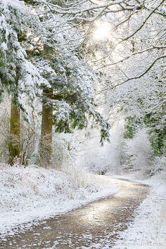 Herefordshire, Winter, by Jordan Mansfield