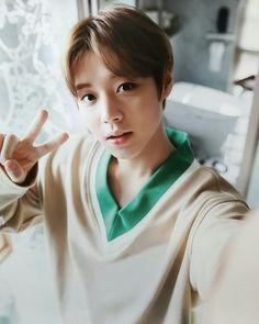 Wanna-One - Park Jihoon Cho Chang, 61 Kg, Produce 101 Season 2, Ha Sungwoon, 3 In One, Jinyoung, Boyfriend, Wattpad, Kpop