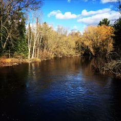 Amazing AuSable  This photo was taken on May 5th, a beautiful spring day in Northern Michigan. As the water ran downstream, ducks could be h...