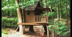 1. Floresta encantada