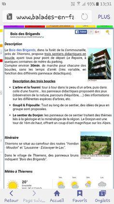 Bois des Brigands