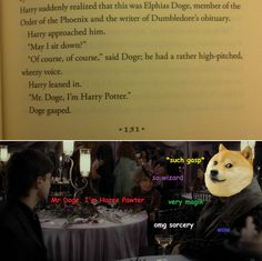 Doge, I'm Harry Potter // funny pictures - funny photos - funny images - funny pics - funny quotes - Harry Potter Characters Names, Harry Potter World, Harry Potter Memes, No Muggles, Fandoms, Mischief Managed, The Book, Hogwarts, Laughter
