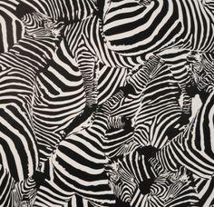#zebre Papier-peint