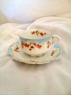 Hermann Ohme Germany Eglantine Porcelain Tea Cup and Saucer - the sweetest baby blue rims and pink roses all around!
