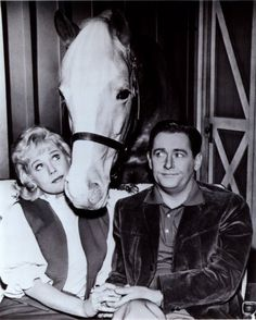 Mister Ed - (1958-1966). Starring: Allan Lane (voice only) as Mister Ed, Alan Young, Connie Hines and Jack Albertson. Partial Guest List: Zsa Zsa Gabor, Clint Eastwood, George Burns, Jon Provost, Nancy Kulp, Alan Hale, Hayden Rourke, Raymond Bailey, Charles Lane, Sandy Koufax, Butch Patrick and Jack LaLanne.