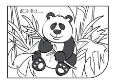 free giant panda coloring pages - photo#48