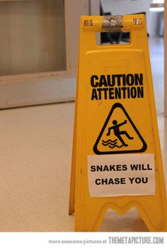 Sneaky reptiles…