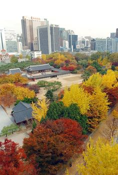 Autumn in Seoul