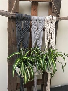 Tri macrame plant hanger. I can change up the colors for you