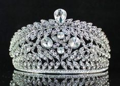 Vines Clear Rhinestone Crystal Tiara with Hair Combs Bridal Prom Pageant T1503 | eBay